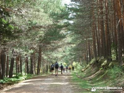 Valle del Lozoya - Camino de la Angostura;federacion de montaña de madrid federacion de montaña ma
